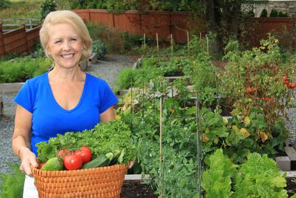 Lady vegetable gardener